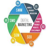 Best Digital Marketing Agency in Delhi