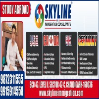 Checklist For a Germany Study Visa Consultants Requirements  Skyline