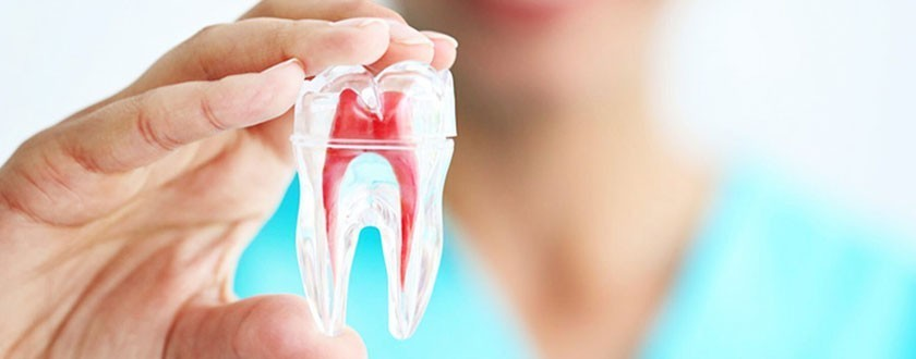 Crown Dental Clinic in Race Course Coimbatore is one of the affordabl